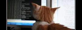 funny-computer-hacker